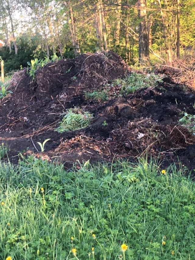 komposthög